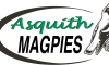 AsquithMagpies Pos VectorLogo GradientColour