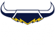 NorthQueenslandCowboys 25years Neg VectorLogo FlatColour