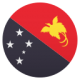 flag papua new guinea2