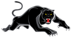 PenrithPanthers 2019 White Keyline