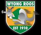 WyongRoos FShield Pos VectorLogo GradientColour