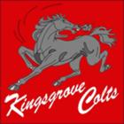 kingsgrove