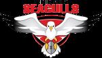 PeninsulaSeagulls2016