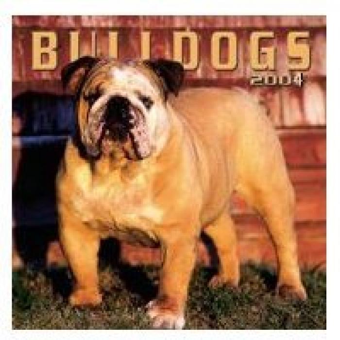 NRL_BulldogsLARGE_Bulldogs_cal_2004.jpg