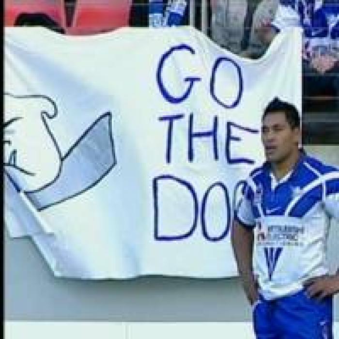 NRL_Bulldogsdogsfans280506.jpg