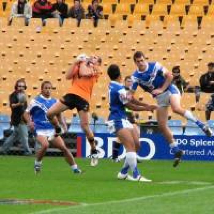 NSWRL_Lions_Tigers.jpg