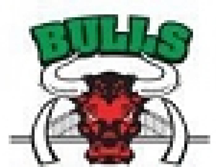 bulls-nswrl-1.jpg