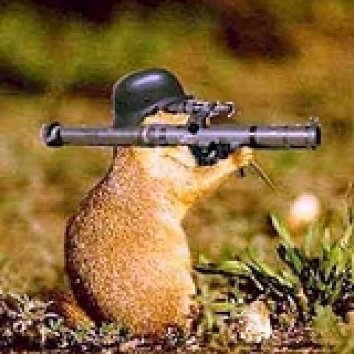 mole-bazooka.jpg