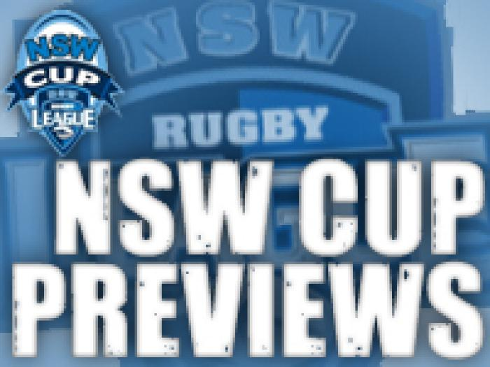 nsw-cup-previews-2011.jpg